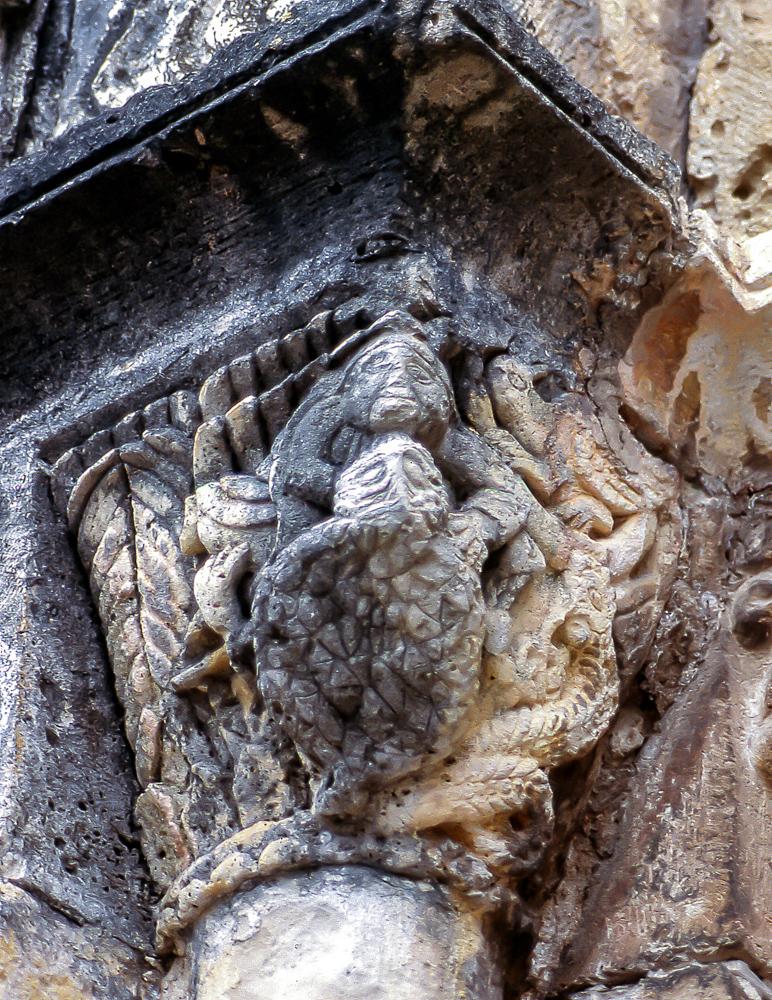 Tortuga con serpiente en el capitel izquierdo de la portada sur de la iglesia de Nuestra Señora de los Angeles, en la localidad cantabra de San Vicente de la Barquera.