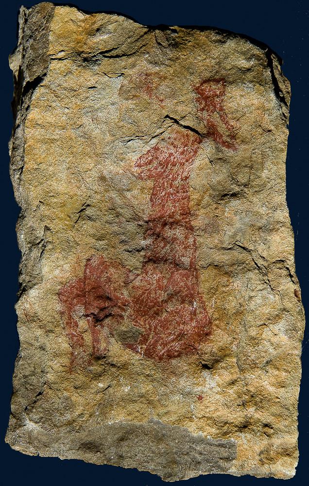Diosa de La Valltorta Rupestre levantino 4000 2000 aC en Covetes del Puntal Barranco Matamoros cercano a la villa de Albocasser Castellon Reproduccion realizada por Daniel de Cruz a partir del calco de Ramón Viñas